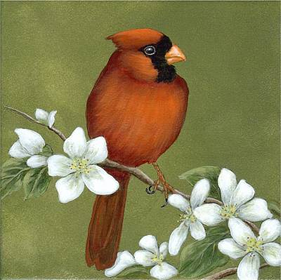 Painting - Cardinal And Dogwood by Fran Brooks