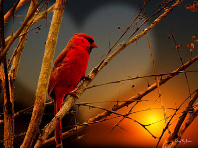 Cardinal At Sunset Valentine Art Print