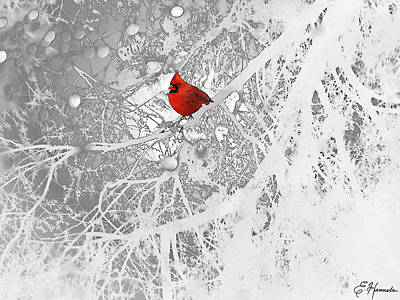 Trees In Snow Drawing - Cardinal In Winter by Ellen Henneke