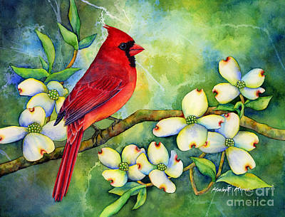Fashion Paintings - Cardinal on Dogwood by Hailey E Herrera