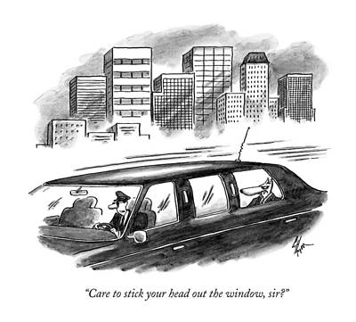 Care To Stick Your Head Out The Window Art Print by Frank Cotham