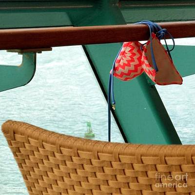 Photograph - Carefree Cruising by Barbie Corbett-Newmin