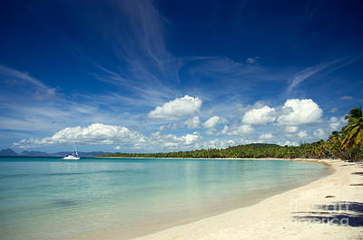 Fishing Photograph - Caribbean Beach by Konstantin Sevostyanov