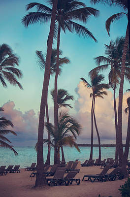 Palm Tree Photograph - Caribbean Dreams by Laurie Search