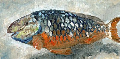 Carribean Painting - Caribbean Fish Orange And Blue by Arch