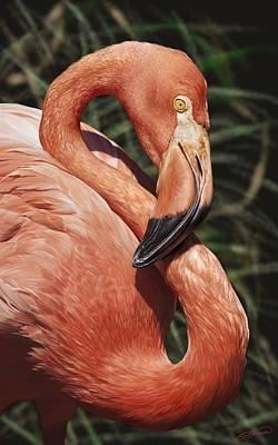 Digital Art - Caribbean Flamingo by Owen Bell