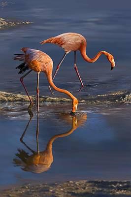 Digital Art - Caribbean Flamingos by Owen Bell