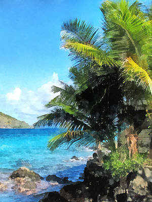 Photograph - Caribbean - Palm Trees And Beach St. Thomas Vi by Susan Savad