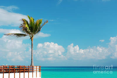 Photograph - Caribbean Sea by Charline Xia