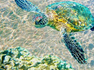 Caribbean Mixed Media - Beautiful Sea Turtle by Jon Neidert