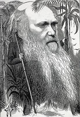 Caricature Of Charles Darwin Art Print