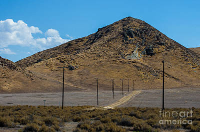 Carizzo Plains Nm  5-9653 Art Print by Stephen Parker