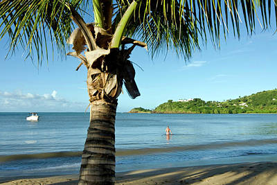 Carlisle Bay Beach, Antigua, West Art Print by Nico Tondini