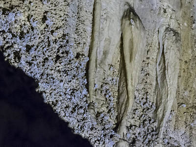 Photograph - Carlsbad Caverns Detail by Jean Noren