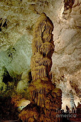 Photograph - Carlsbad Caverns Stalagmite by Jeremy Linot