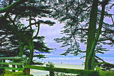 Photograph - Carmel And Her Fences  by Joseph Coulombe