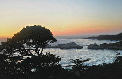 Photograph - Carmel's Scenic Beauty by Kristina Deane