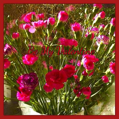 Photograph - Carnations Valentine's Greeting 2 by Joan-Violet Stretch