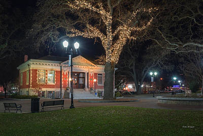 Photograph - Carnegie Library January 2014 by Tim Bryan