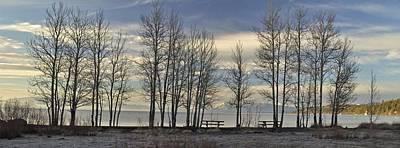 Photograph - Carnelian Trees Larry Darnell California Landscape Art by Larry Darnell