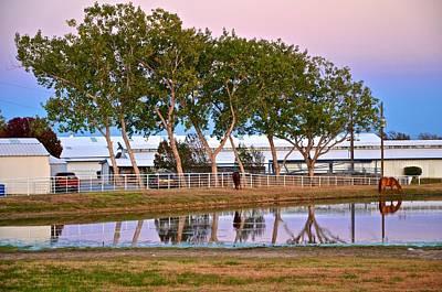 Photograph - Carol Rose Ranch by Ricardo J Ruiz de Porras