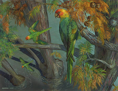 Carolina Parakeet In A Bald Cypress Original by ACE Coinage painting by Michael Rothman