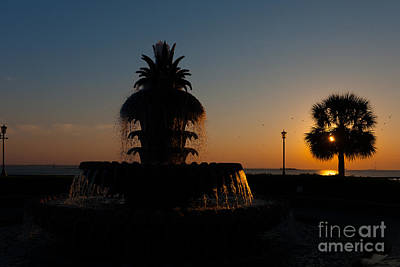 Photograph - Carolina Silhouette by Dale Powell