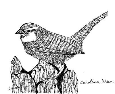 Carolina Wren Drawing - Carolina Wren by Becky Mason