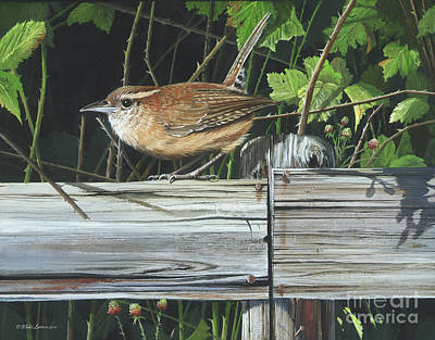 Painting - Carolina Wren by Mike Brown