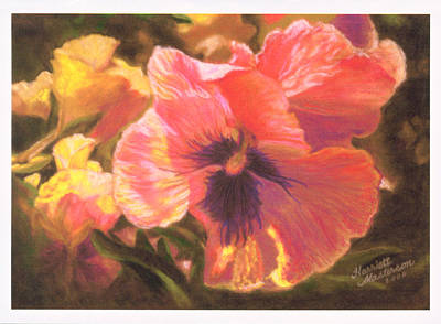 Caroline's Pansies Art Print by Harriett Masterson