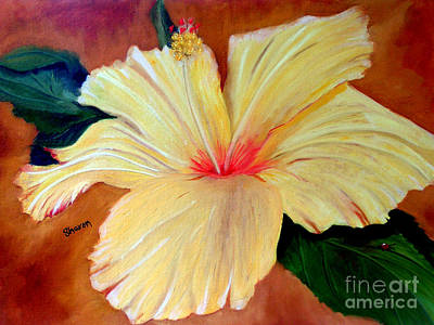 Carols Hibiscus Art Print by Sharon Burger