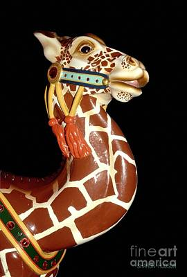 Photograph - carousel animal pictures -  Carousel Giraffe by Sharon Hudson