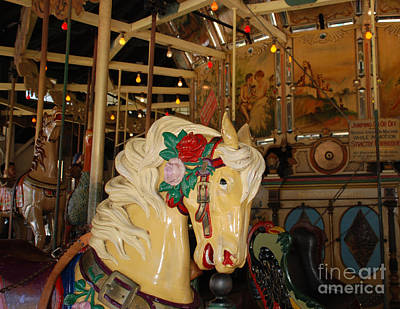 Photograph - Balboa Park Carousel by Claudia Ellis