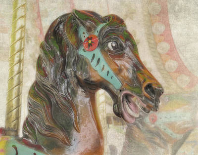 Photograph - Carousel Horse by David and Carol Kelly