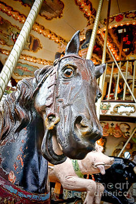 Photograph - Carousel Horse Head by Olivier Le Queinec