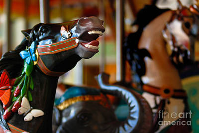 Carousel Horses Print by Amy Cicconi