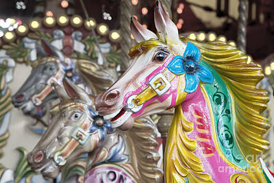 Carousel Horses Art Print by Jane Rix