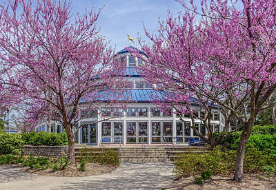 Photograph - Carousel In Coolidge Park by Tom and Pat Cory