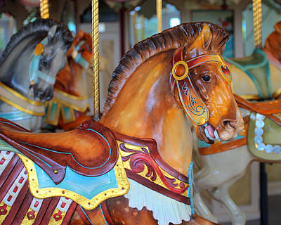 Hager Wall Art - Photograph - Carousel Roman Horse No. 1 by Greg Hager