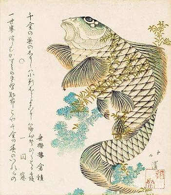 Fauna Painting - Carp And Seaweed by Pg Reproductions