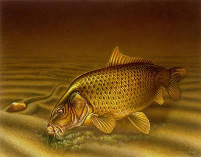 Carp Art Print by Jon Q Wright