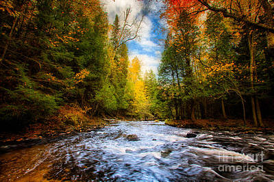 Marquette Wall Art - Photograph - Carp River by Todd Bielby