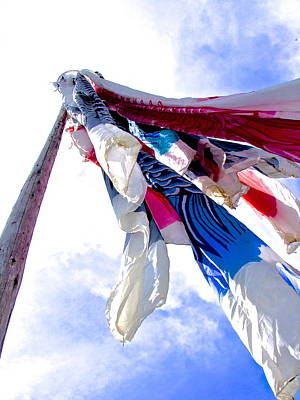 Photograph - Carp Streamers - 1 by Larry Knipfing