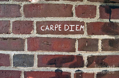 Photograph - Carpe Diem by Glenn Gordon