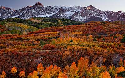 Carpet Of Color Print by Darren  White