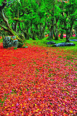 Fallen Leafs Photograph - Carpet Of Love by Midori Chan