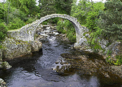 Photograph - Carrbridge Scotland by Alan Toepfer