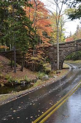 Carriage Bridge In Acadia Art Print