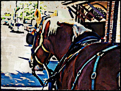 Photograph - Carriage Horse by Alice Gipson