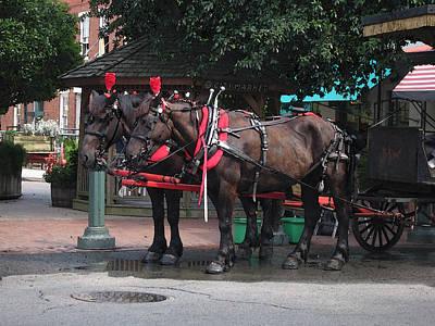 Carriage Horses At City Market Art Print by Linda Ryan